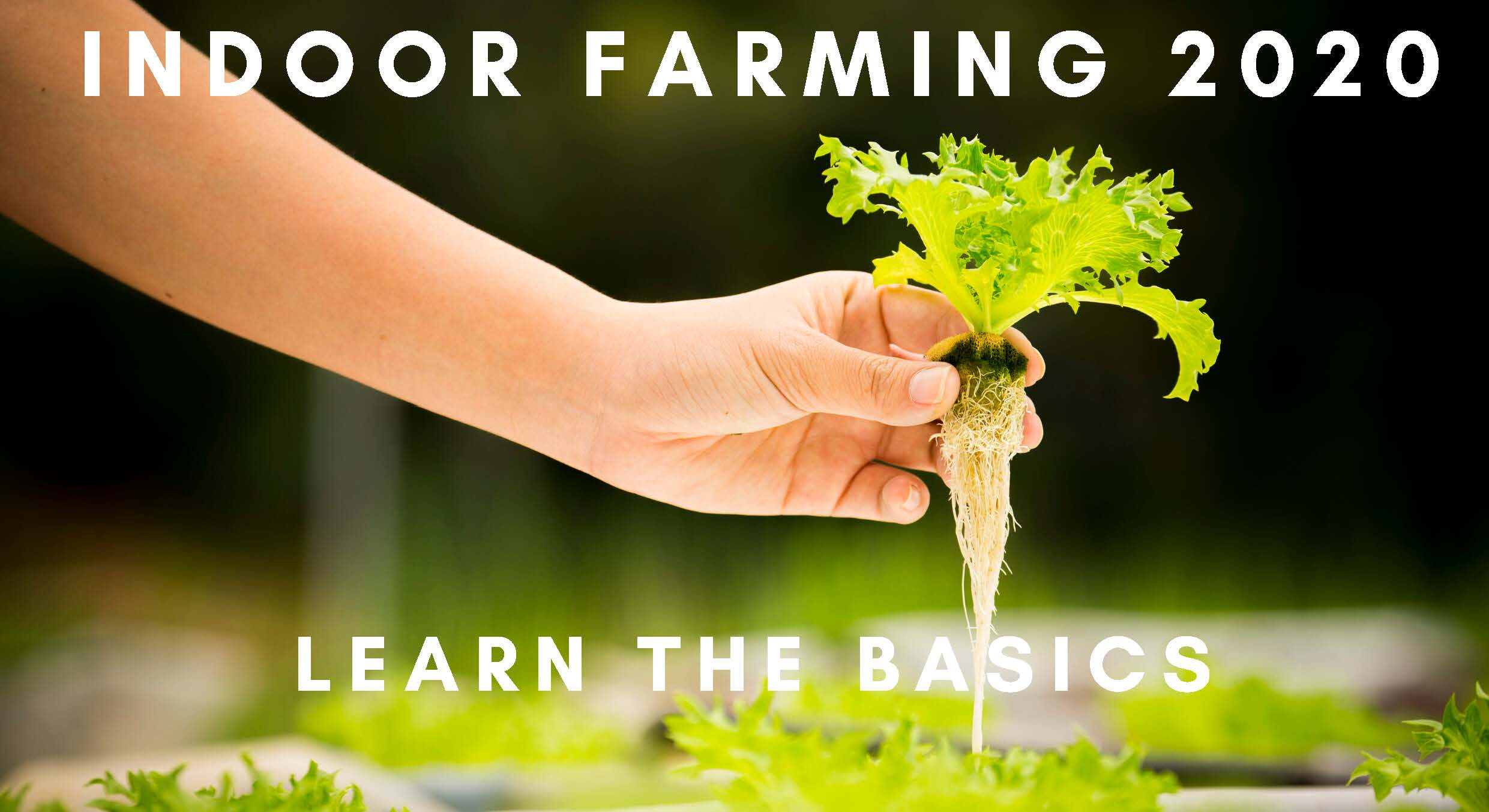 Indoor Farming basics