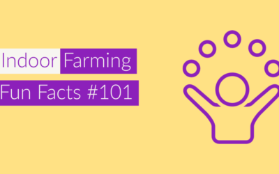 Indoor Farm FunFacts-Success Factors